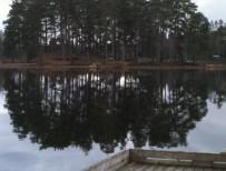 Mobilbilder_2, 2012-04-14 005
