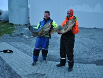 106 Jörgen och Christoffer med var sin fisk nu väntar katten på sin del